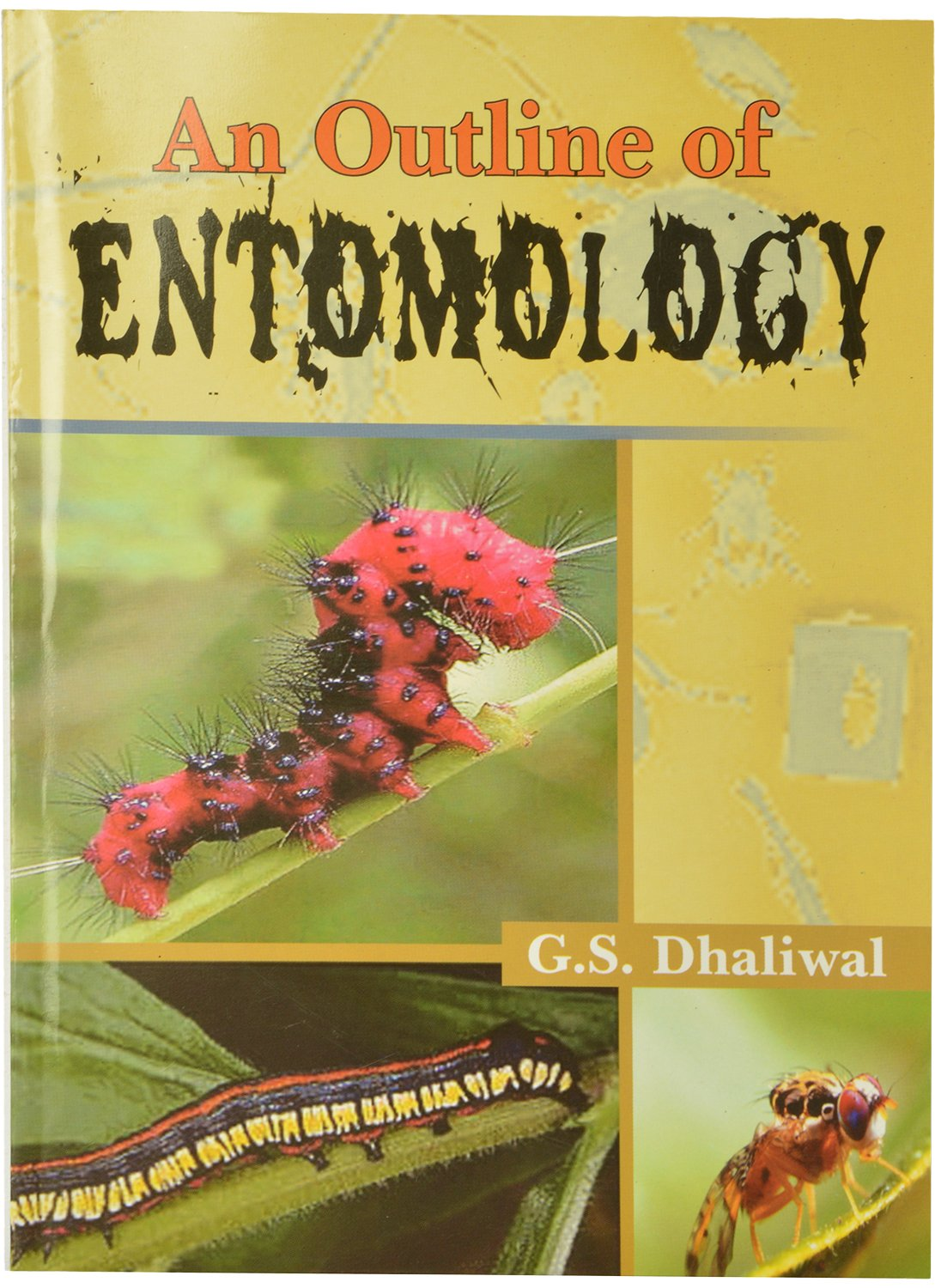 An Outline of Entomology