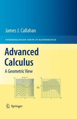 Advanced Calculus: A Geometric View (Undergraduate Texts in Mathematics)
